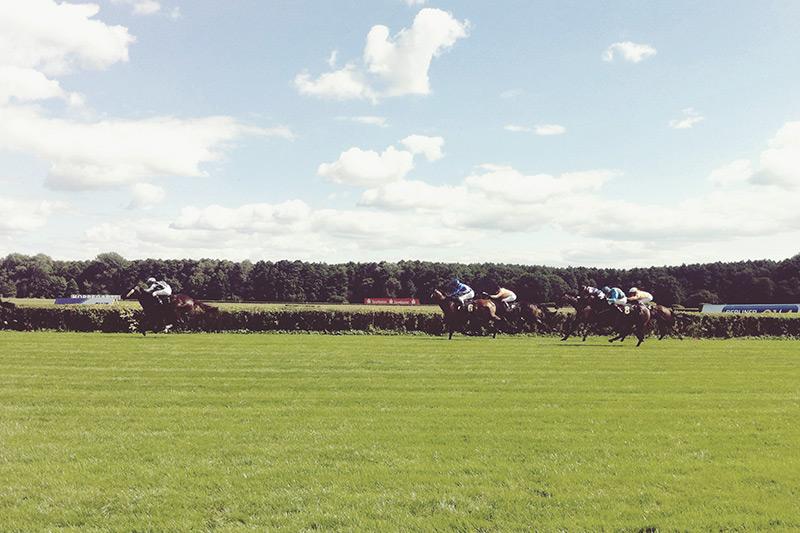 smaracuja sommer hoppegarten pferderennen