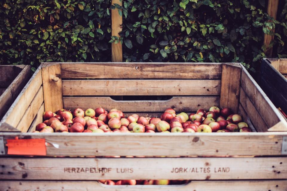 Apfel Rezepte Apfelsuppe Äpfel