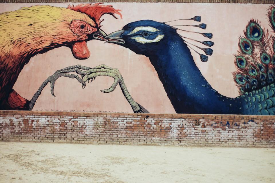 Street Art Ericailcane Rimini