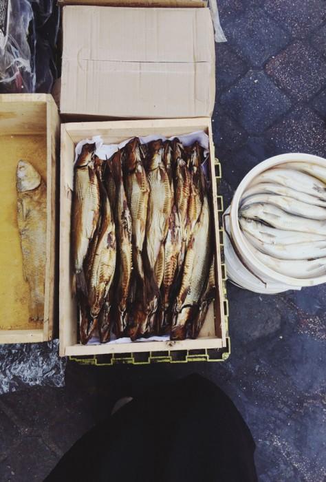 Jordanien Amman Fische
