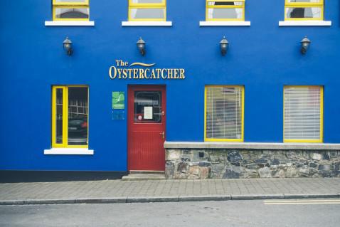 Carlingford Irland Austern