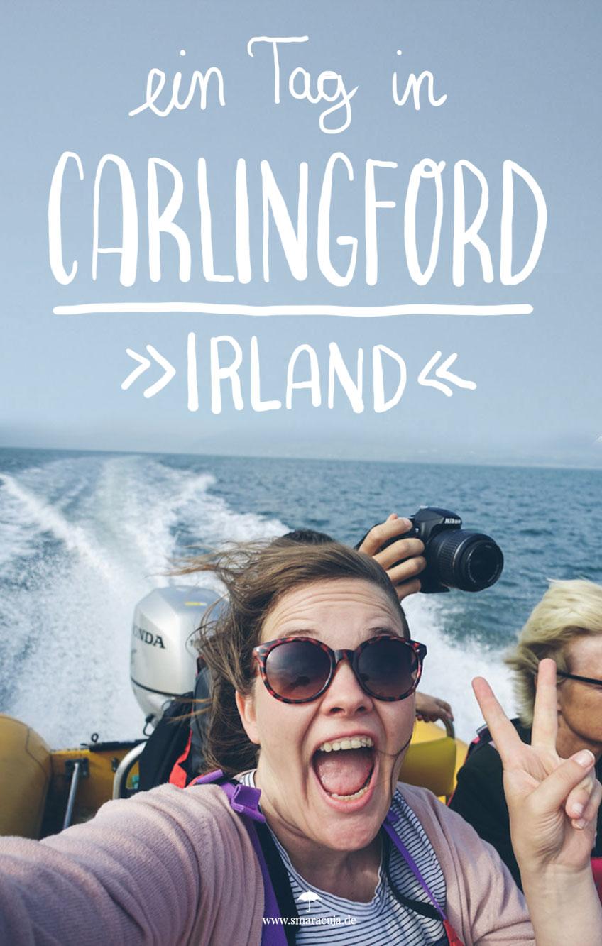 Warum Carlingford an Irlands Ostküste unbedingt einen Stopp auf eurem Road Trip wert ist - Mit Leprechauns, Speedboat Spaß und Austern