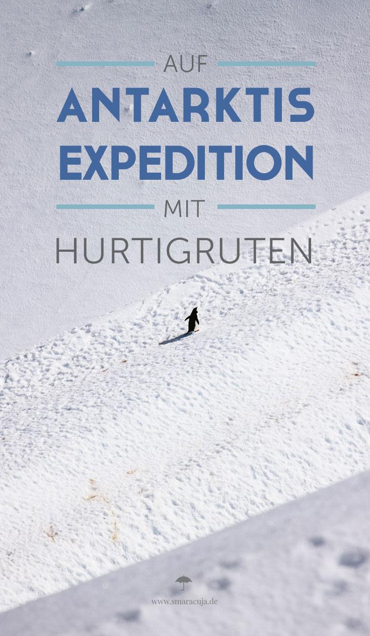 Mit dem Postschiff von Hurtigruten auf Expedition an den siebten Kontinent: Die Antarktis