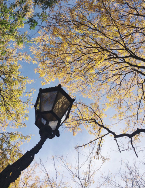 Herbst Bucket List Herbstfarben