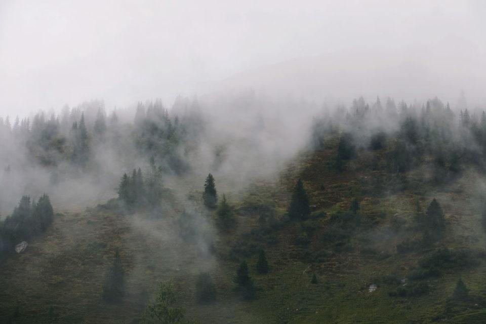 Herbst Bucket List Nebel Österreich