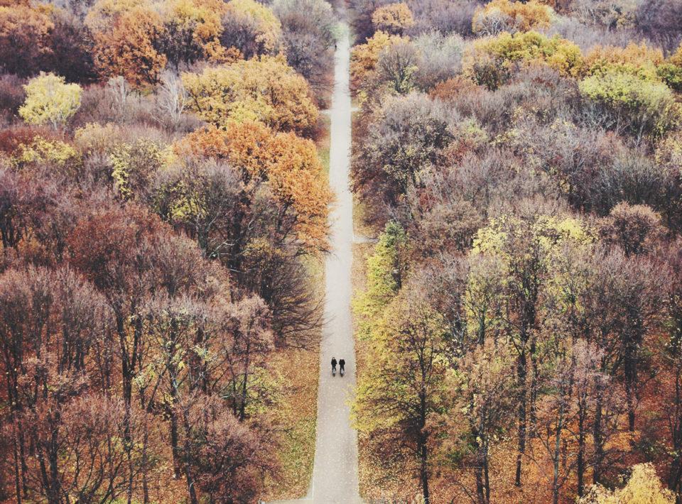 Herbst Bucket List Tiergarten