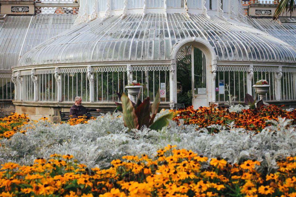 Belfast Tipps Städtereise Botanic Gardens