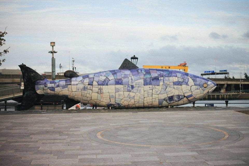 Belfast Tipps The Big Fish