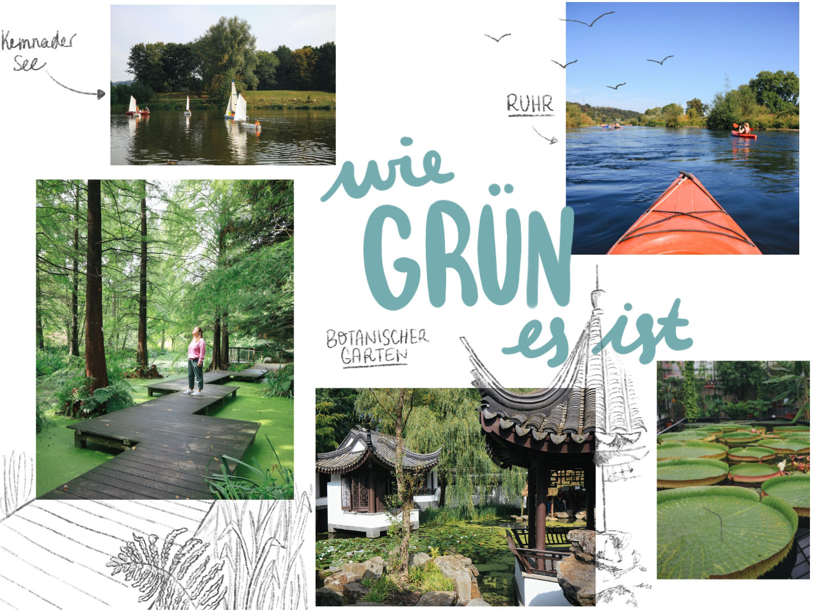 Grün Ruhrgebeit bitanischer garten ruhrpark Kemnader See