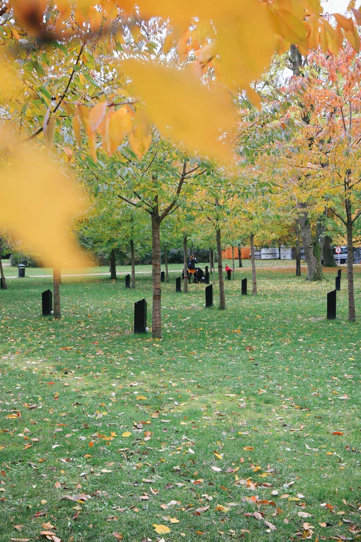 Aalborg Singing Trees singende Bäume Park Dänemark